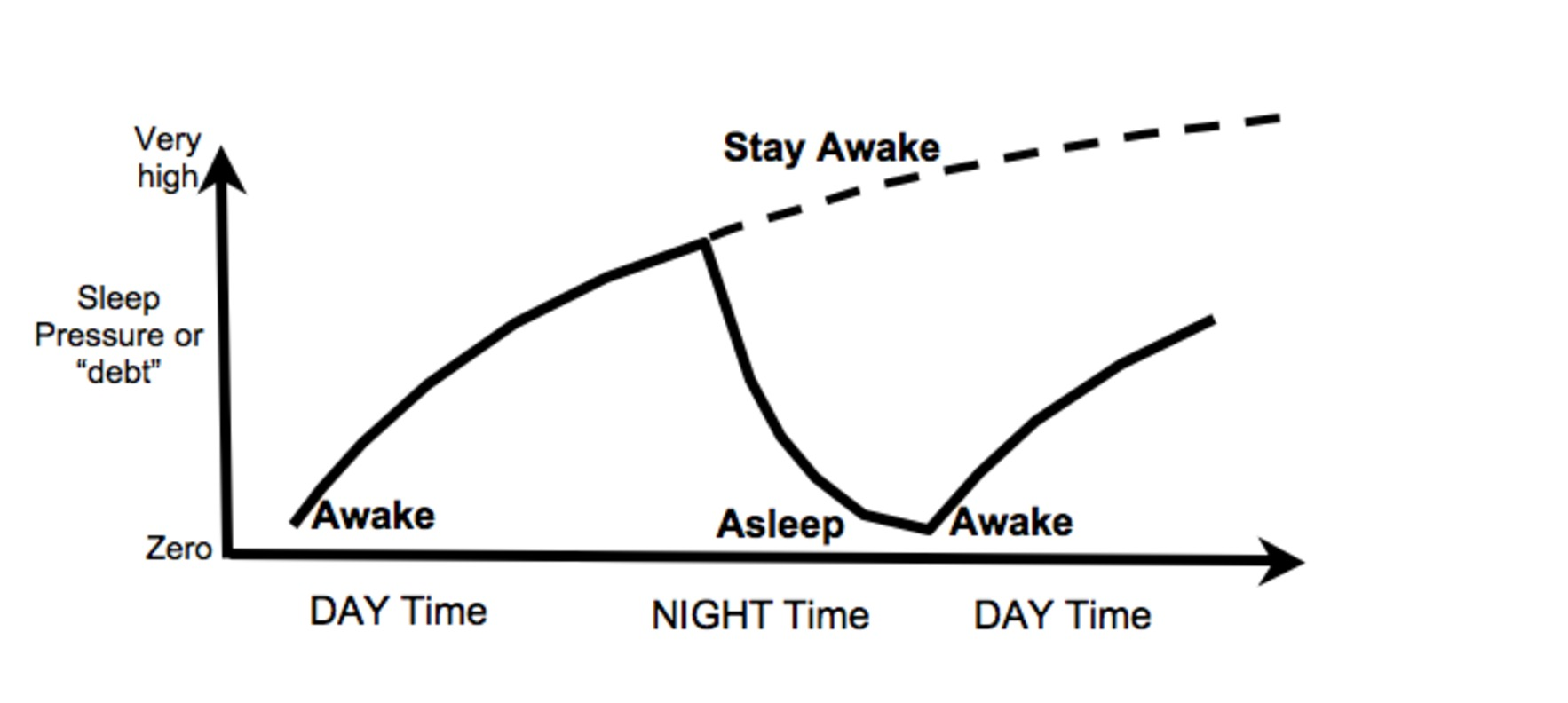 explainer  can you pay off your  u0026 39 sleep debt u0026 39