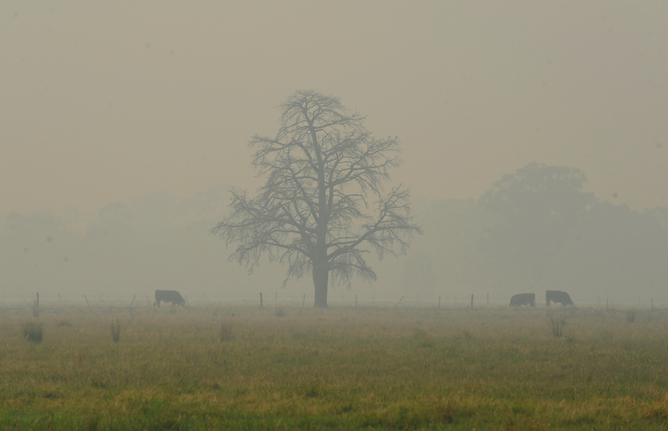 A farm under a cloud of smoke from a bushfire.