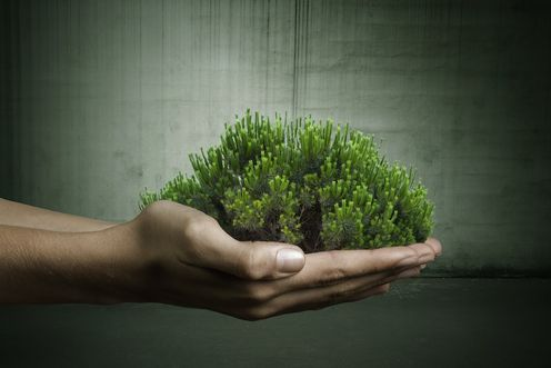 Sustainability reporting - finally taking off?