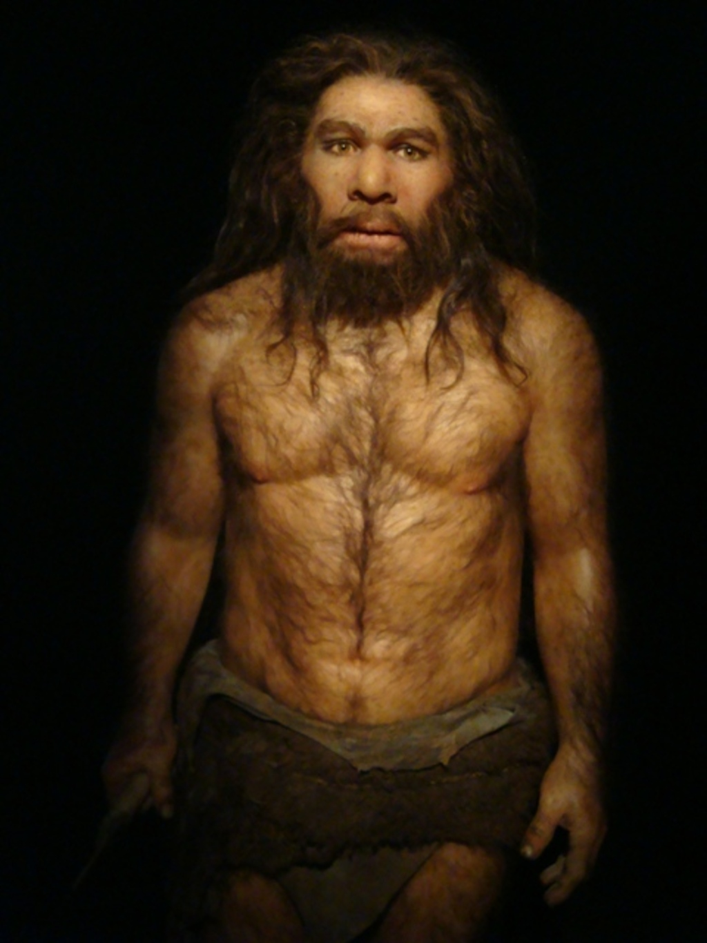 the cro magnons and neanderthals Compare the neanderthal and cro-magnon peoples by describing the achievement of both groups.